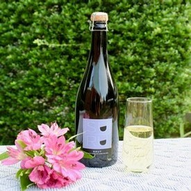 Suhru Wines NV Brut is our Wine of the Week