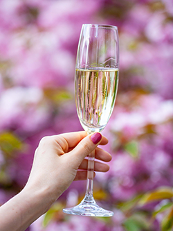 Cheers to Spring on the North Fork